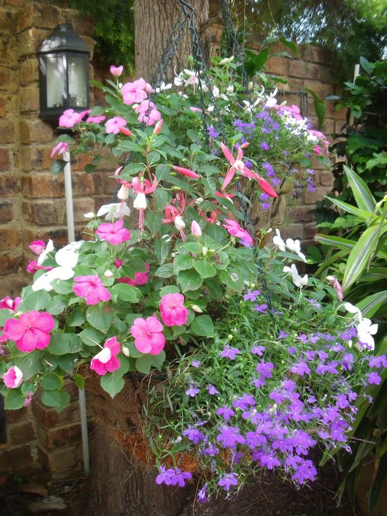Hanging Baskets Overflowing With Flowers Are Hard To Resist