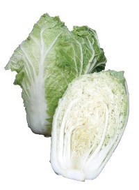 Cabbage 'Chinese' Picture courtesy www.ballstraathof.co.za