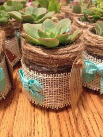 Recycled baby food jars with succulents. Image by Erica from Pixabay
