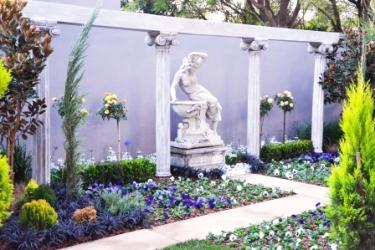 Picture courtesy www.gardenworld.co.za