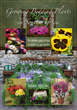 Growing Bedding Plants in SA ebook cover