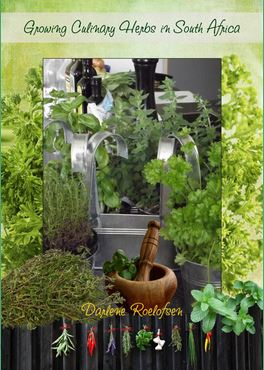 Growing Cullinary Herbs in SA EBook cover
