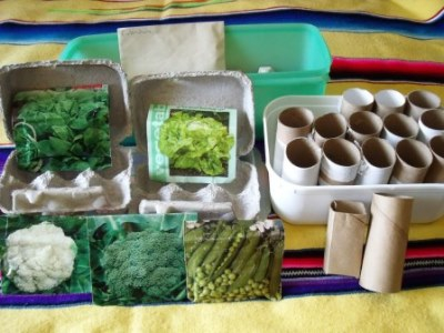 Germinating seeds with re-cycled items.