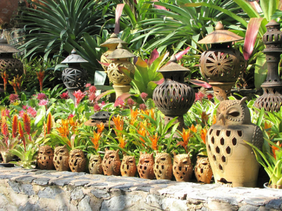 Gardening in subtropical & humid regions article